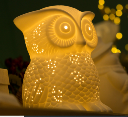1 Owl Light