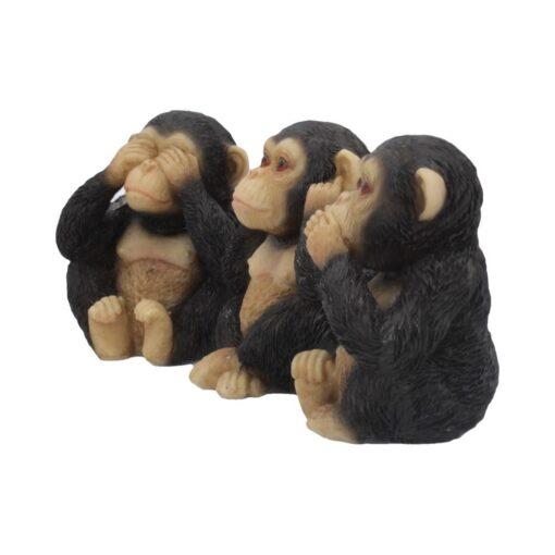Chimp 1