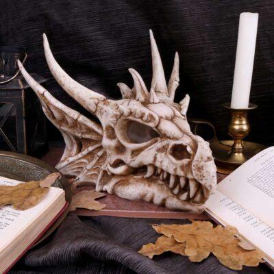 Dragons & Skulls