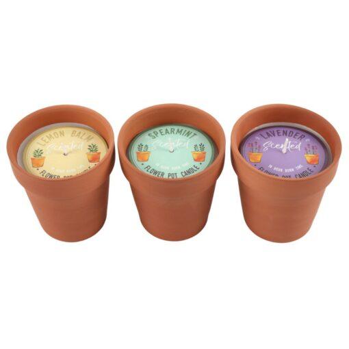 1 Candle Pot