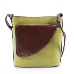 Two Tone Cross-Body Bag in Green & Brown
